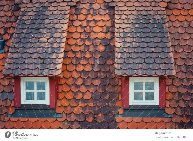 Two old standing roof windows - hipped roof - and red old roof tiles. Window Deserted Facade House (Residential Structure) Architecture Building Exterior shot