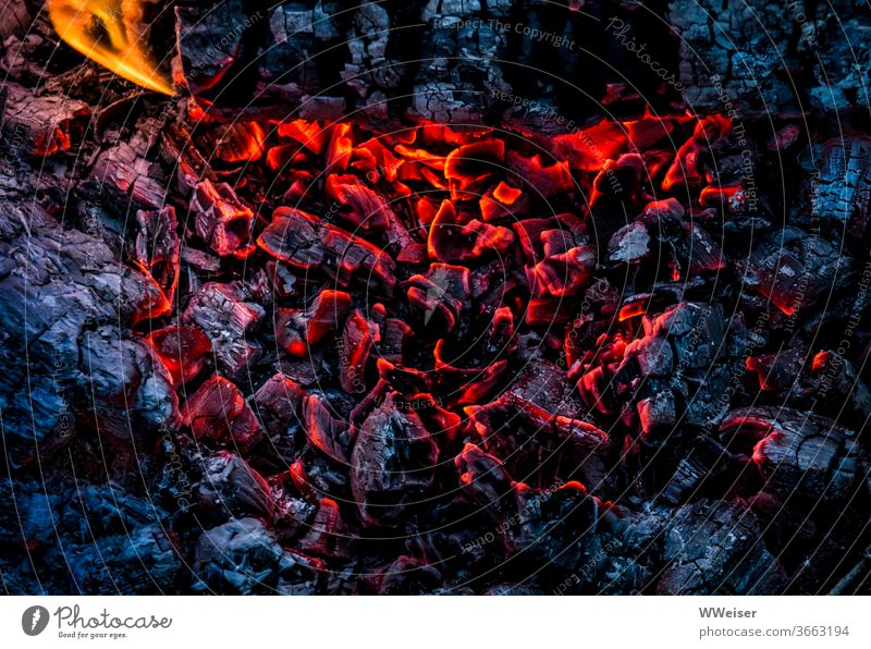 The hot coals are still glowing Fire Embers Flame Glow Hot Coal Burn Warmth ardor fire bowl Fireplace Incandescent colour contrast Red Blue Black Close-up