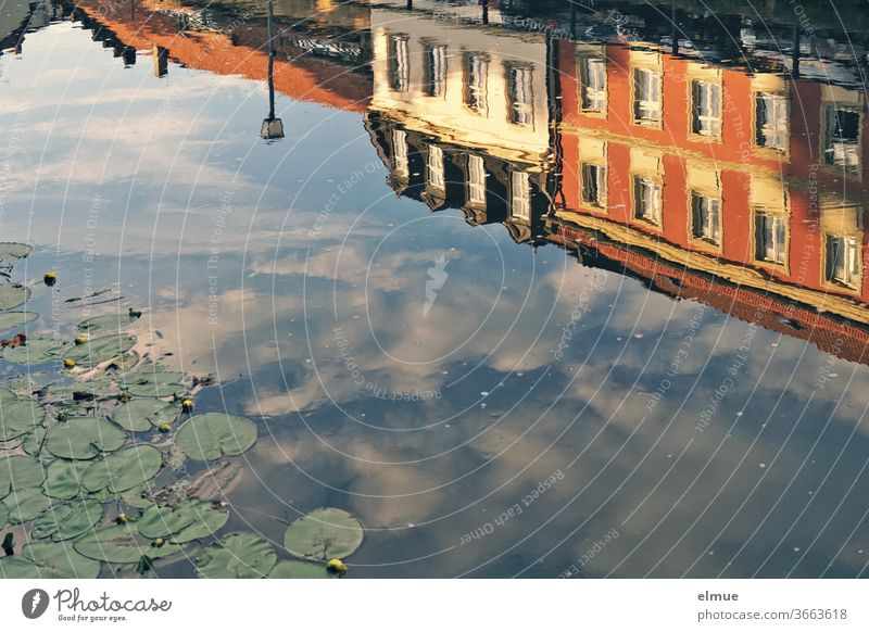 Houses and a street lamp on the bank as well as clouds in the blue sky are reflected in the river in front of water lilies reflection