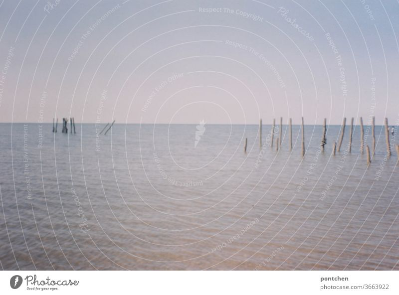 Waters, sticks and blue sky Body of water Sticks Boundary Lake Sky Summer Waves Ocean tranquillity Nature Horizon