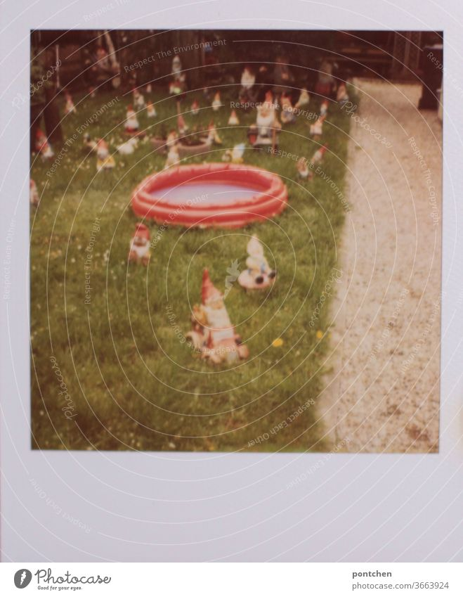 Polaroid shows many garden gnomes and a paddling pool in a garden. German smugness Garden gnome Paddling pool Summer square Meadow Kitsch Characteristic