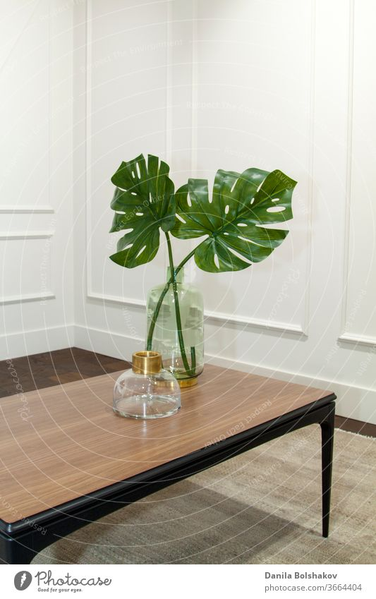 monstera leaves in glass vase on a wooden table in an elegant interior boiserie urban jungle monstera deliciosa expensive living wall foliage style floral