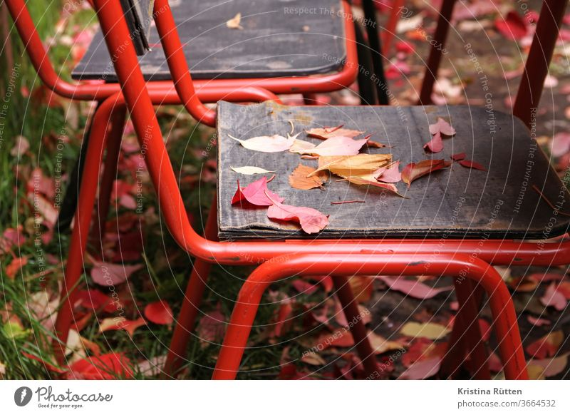 autumn leaves on the garden chair Chair Autumn leaves autumn colours Autumnal Garden Café Terrace Beer garden Nature idyllically Picturesque Appealing