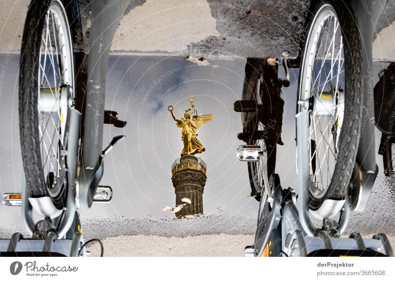 Victory column in a puddle reflection with bicycles Downtown Deserted Tourist Attraction Landmark Monument Gold Statue Colour photo Exterior shot