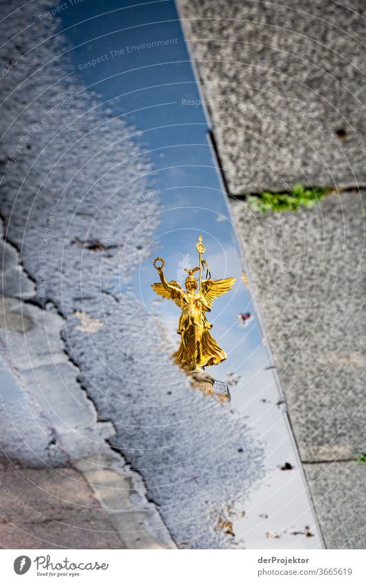 Victory column in a puddle reflection with asphalt and curb Downtown Deserted Tourist Attraction Landmark Monument Gold Statue Colour photo Exterior shot