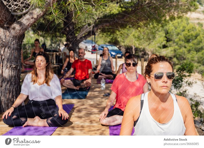 Diverse people during yoga session in garden meditate padmasana lotus pose summer park healthy wellness lesson practice exercise harmony relax group diverse