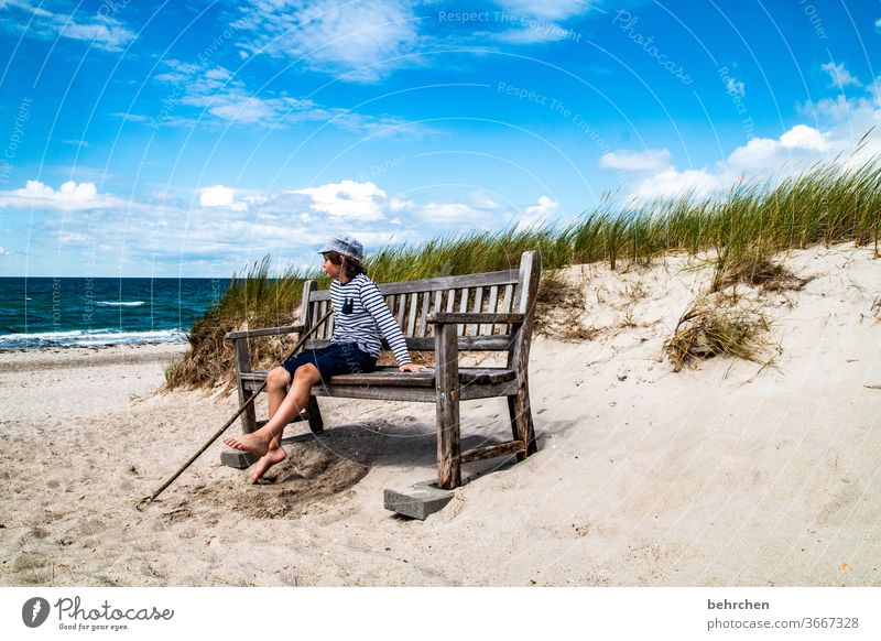 Neptune Happiness Playing Contentment fortunate Happy Baltic coast Tourism Relaxation fischland-darß Germany Mecklenburg-Western Pomerania Summer muck about