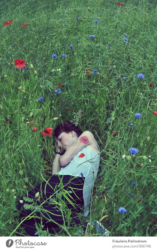 A bed in poppy field II. Human being Feminine Young woman Youth (Young adults) Woman Adults Arm 1 18 - 30 years Environment Nature Plant Spring Summer