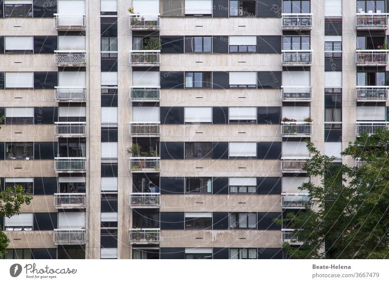 Paris - residential complex in the 15th arrondissement with trees and balcony planting block of flats Individualization conformal Foliage plant city district