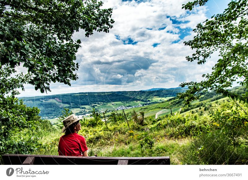 Good prospects Vineyard fields Infancy Child Freedom Trip Wanderlust Colour photo Bench wide Far-off places Tree Germany Vacation & Travel Sky Clouds Mountain
