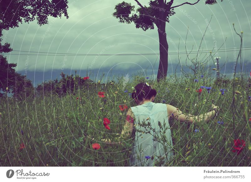 rooted. Human being Feminine Young woman Youth (Young adults) Back Arm 1 18 - 30 years Adults Nature Plant Sky Spring Summer Weather Grass Bushes Field Discover
