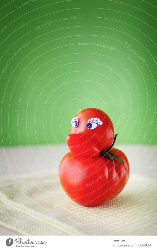 Tomato Duck Food Nutrition Organic produce Vegetarian diet Nature Animal Bird Growth Exceptional Fresh Healthy Delicious Funny Natural Cute Crazy Joy Happiness