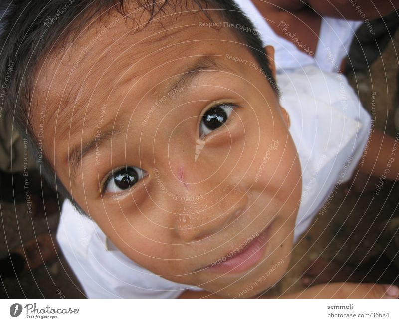 Child Man Face Eyes Boy (child) Thailand