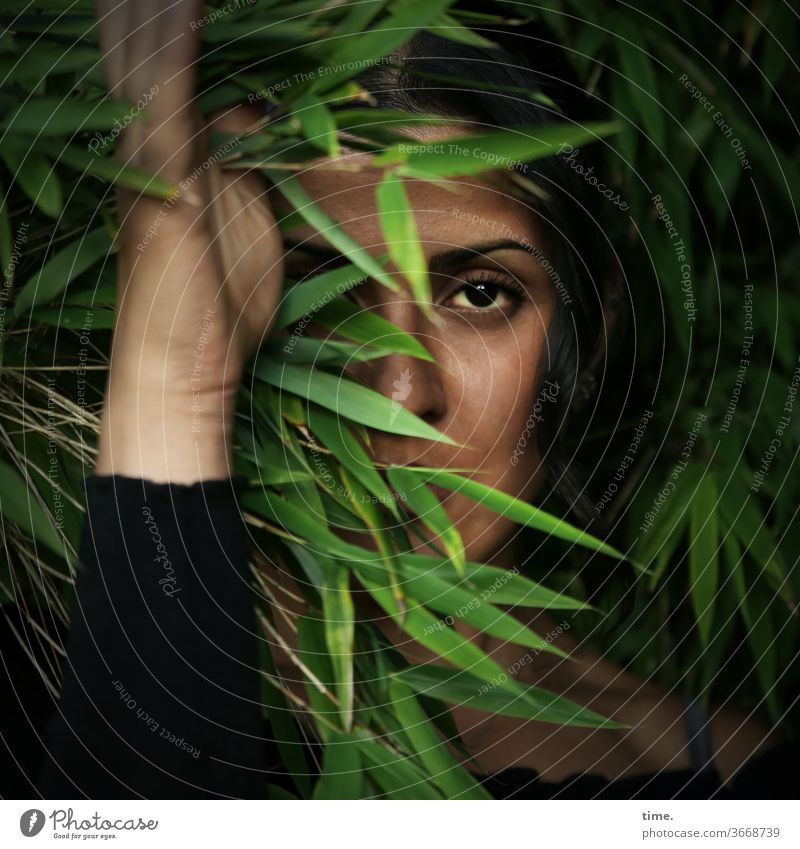Estila | favourite person Dark-haired Long-haired Observe look Feminine Woman Forest tree Nature already Concentrate bush by hand spooky Sweater covert
