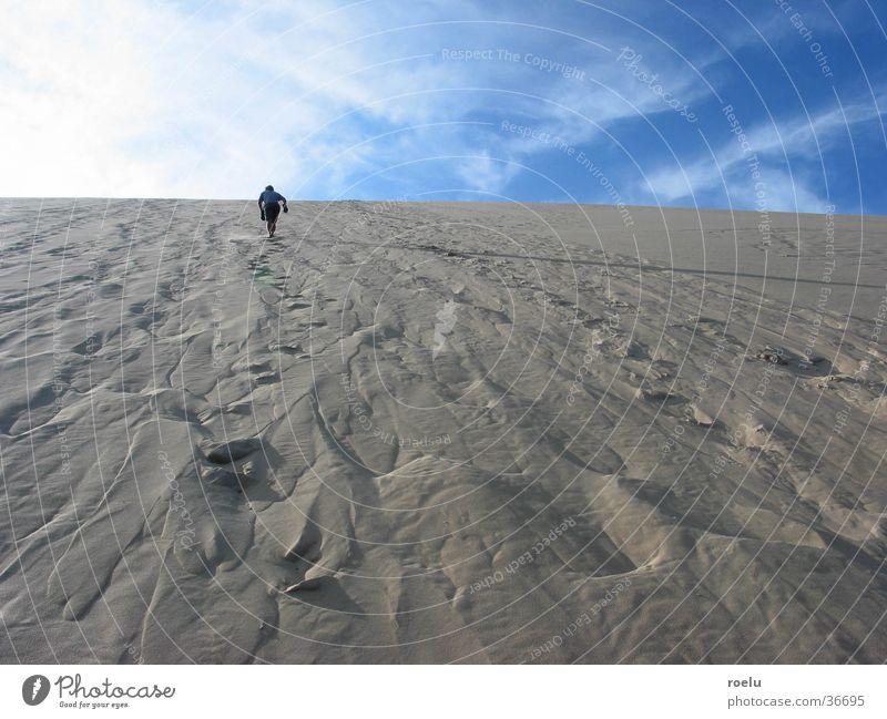 skyrocketers Physics Horizon Light Europe Sand Beach dune Warmth Human being Upward skystormer