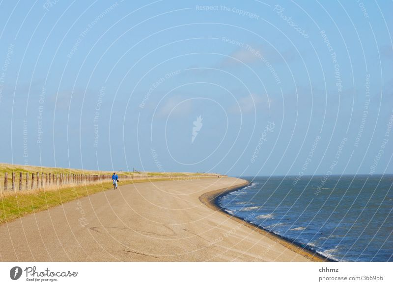 headwind Life Cycling Vacation & Travel Tourism Trip Summer Ocean Island Netherlands 1 Human being Landscape Water Horizon Coast North Sea Bicycle Movement