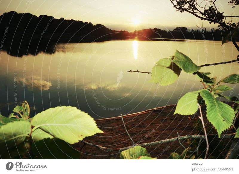 far away Lake out Dreamily Evening leaves windless Mysterious huts Water Surface of water Reflection Water reflection Illuminate Panorama (View) daylight
