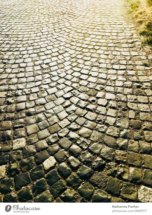 cobblestones, path, evening sun Lanes & trails Paving stone Cobbled pathway Evening Exterior shot Evening sun Day Colour photo Deserted Stone Street
