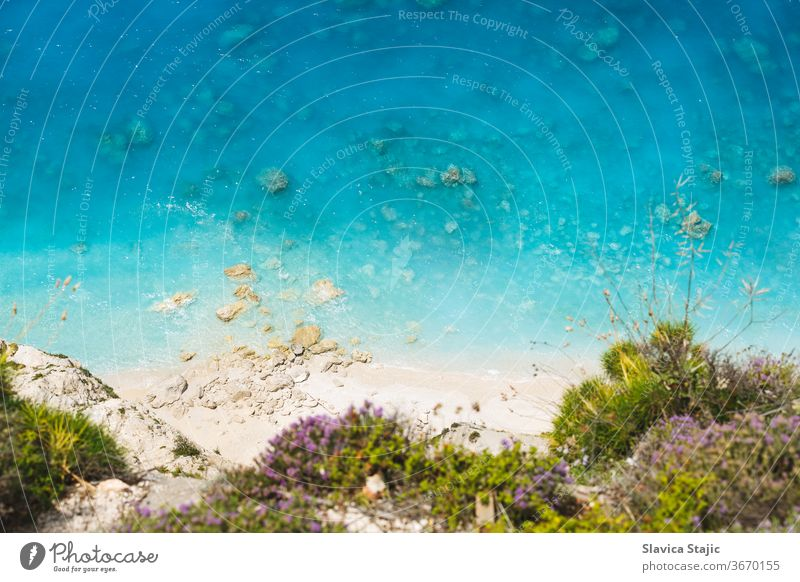 Aerial view of sandy wild beach with clear water. Flowering wild thyme at the edge of the cliff, beautiful beach background above aerial bay blooming blue coast
