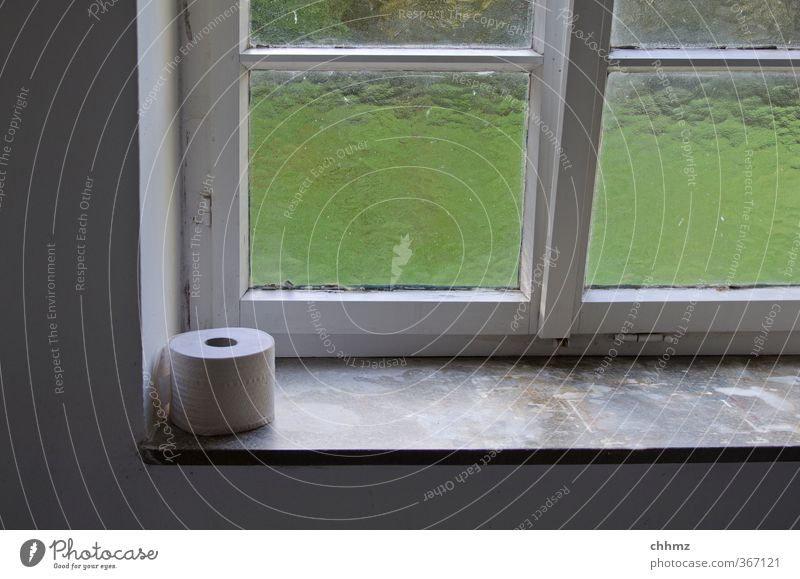 emergency food Window Window board Lattice window Sit Toilet paper Toilet paper holder Pane Relief Frosted glass Public Urgent Clean Light Look out Colour photo