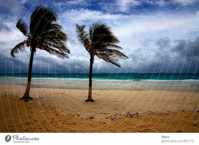 beach seaweed and coastline in playa paradiso Sky Blue Green White Tree Ocean Red Beach Black Yellow Coast Stone Brown Sand Rock Watercraft