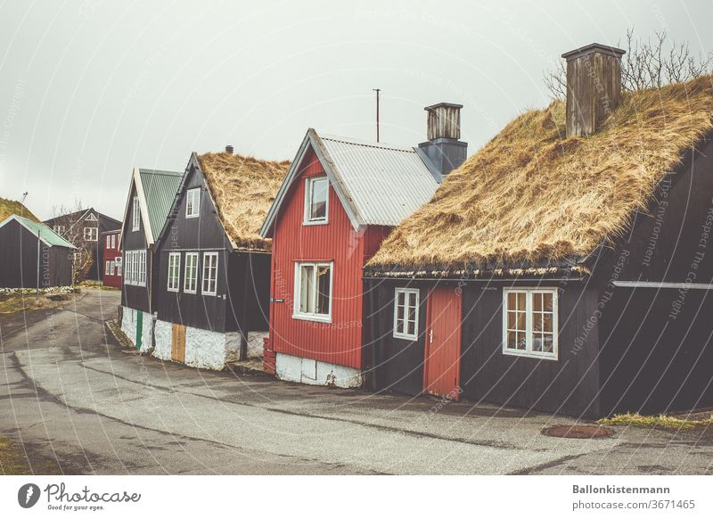 Iceland Inventory 38 Reet roof Thatched roof house Scb Swedish house Housefront hazy hygge Autumnal