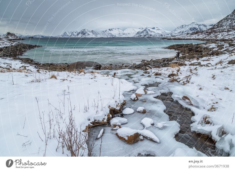 An icy river meanders towards the sea to share its sweet water with its salty one, but unfortunately this is not possible because there is a barrier... Lofotes