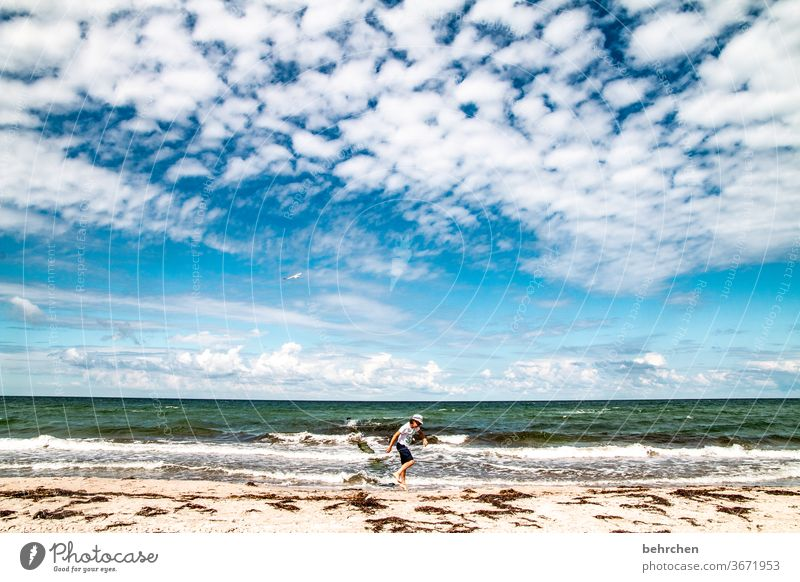 more sea always goes Water Waves Beach Ocean Darss Baltic Sea Sky Clouds Nature Landscape Coast Colour photo Exterior shot Vacation & Travel Child Infancy