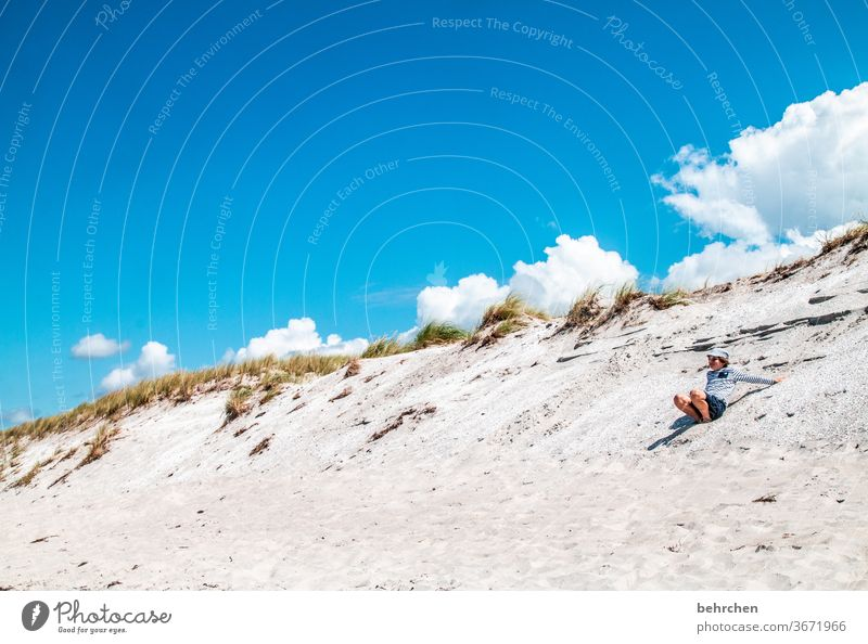 Heaven on earth Beach Ocean duene Darss Baltic Sea Exterior shot Sky Clouds Nature Landscape coast Colour photo Vacation & Travel Infancy Child muck about