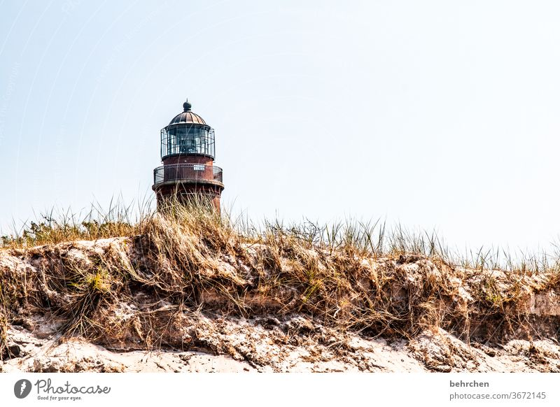 architecture and nature | love of the lighthouse Beach Ocean dune Darss Baltic Sea Exterior shot Sky Nature Landscape Coast Colour photo Vacation & Travel