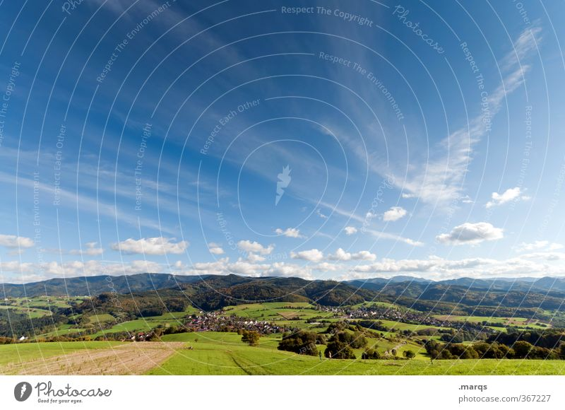 MIDDAY Vacation & Travel Tourism Trip Freedom Nature Landscape Sky Clouds Summer Climate Beautiful weather Field Forest Hill Hiking Moody Rhine plain breisgau