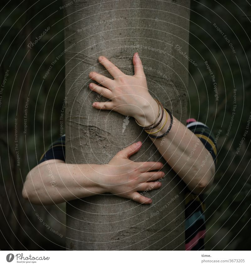 Kissing a tree | printed product Embrace Force Forest hands sleeves Woman Love devotion wristbands beeches Tree trunk humility Nature Meditation Inspiration