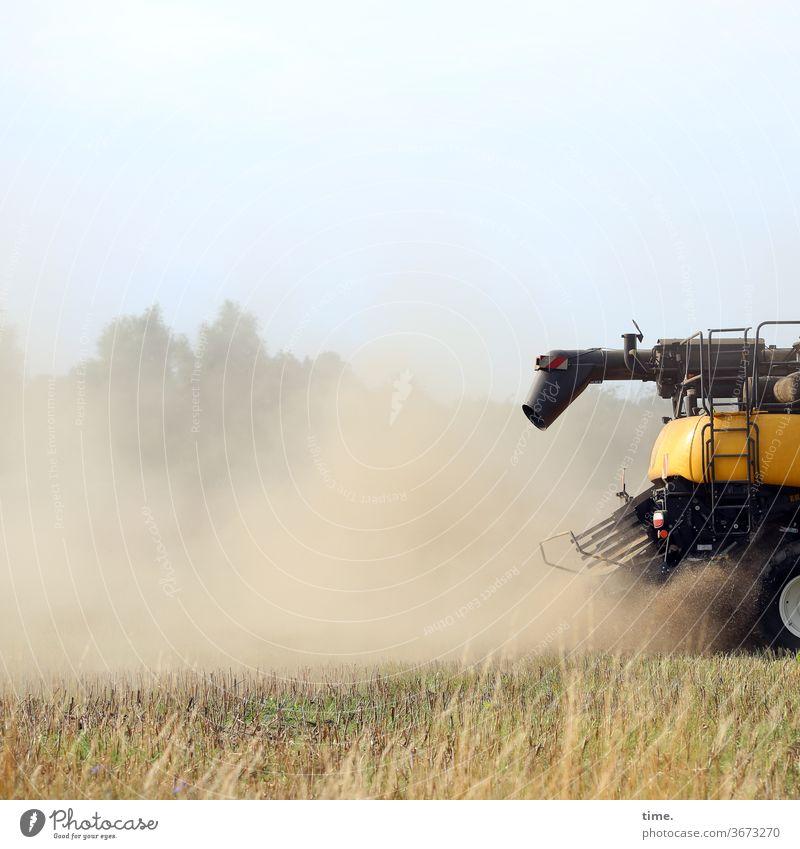 I'm gonna kick your ass! Combine Dust Agriculture bush tree sunny Sky Shadow Harvest Driving Grain field work Crash Vehicle