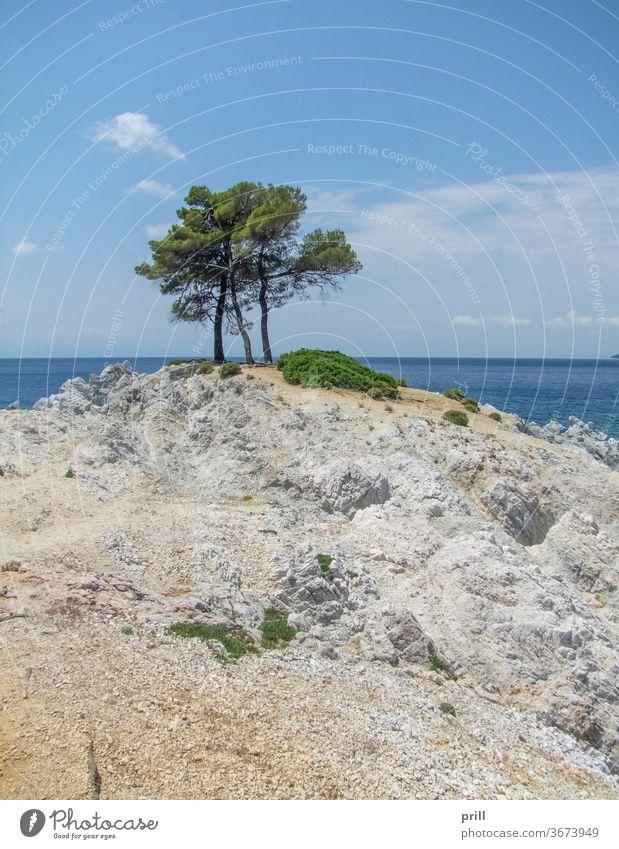 Amarantos rocks at Skopelos kap amarantos baum strand skopelos sporaden Ägäisches meer insel ozean thessalien bucht wasser klar transparent felsformation felsig