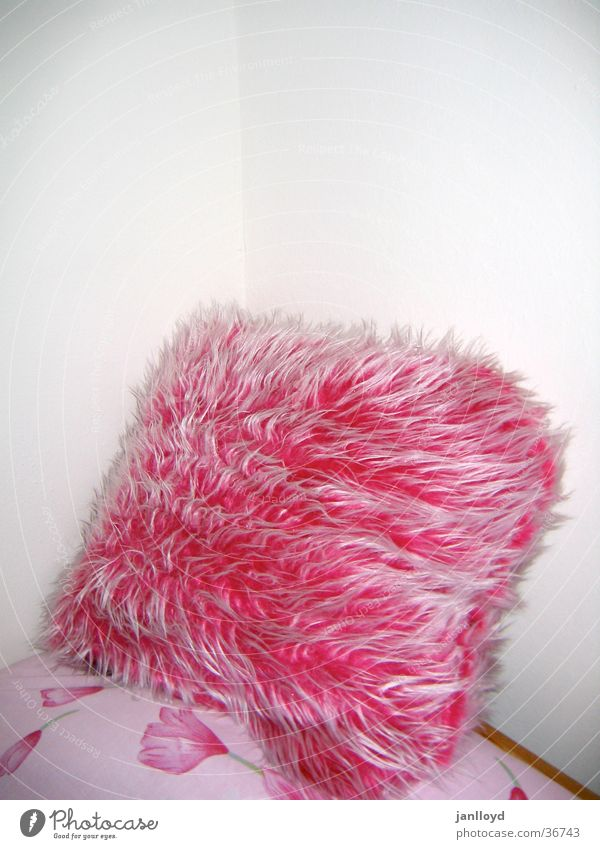 fluffy Cushion Wall (building) Soft Pink Bed Pelt Living or residing Corner Placed Pillow