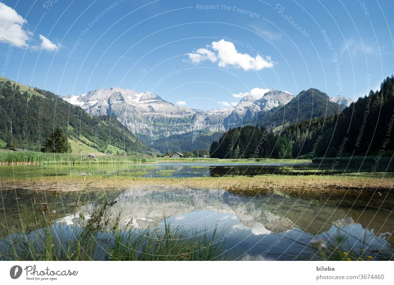 Mountains in the holiday paradise of Lenk are reflected in the water of Lenkersee in postcard weather. mountains Lake mirror reflection Reflection in the water