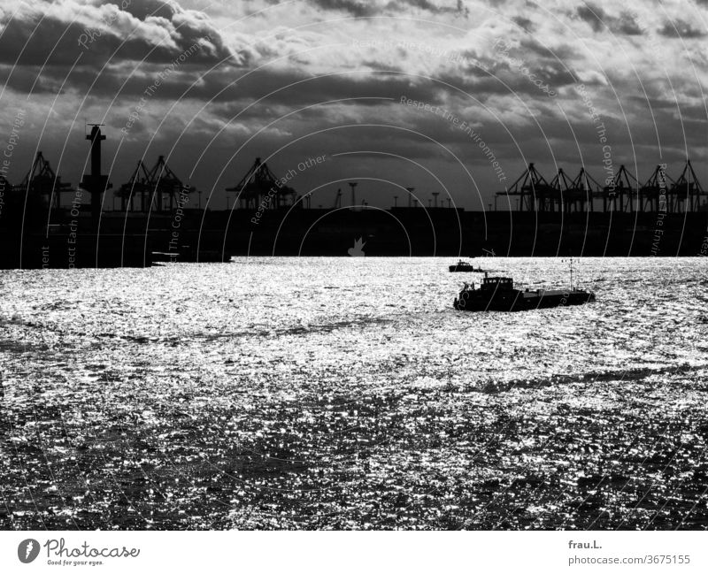 The Elbe glistens silver in the sun, the cranes remain in the dark and marvel, while the ships glide silently. Hamburg Harbour Watercraft Crane Clouds Sunset