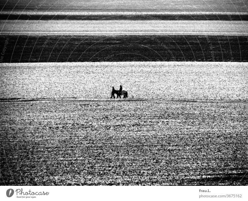 Who rides so late through icy fields and wind, it is a father with his child. Bangs Village acre girl Man Winter Evening