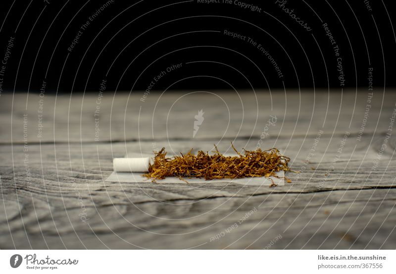 Relaxation Wood Natural To enjoy Break Smoking Tobacco products Rotate Intoxicant Cigarette Addiction Nerviness Wood grain Drug addiction