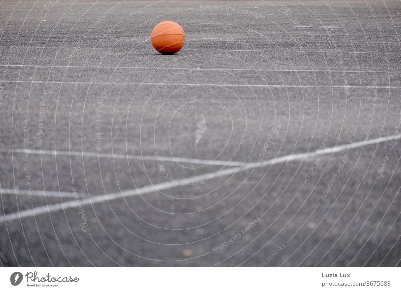 A forgotten ball lies in the evening light on the empty sports field Ball Ball sports Sports Playing Leisure and hobbies Colour photo Exterior shot Deserted