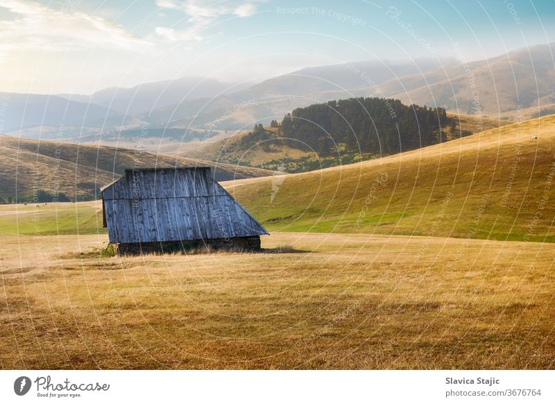 Mountain landscape in beautiful late summer or fall  environment agriculture animal autumn barn country countryside cow cows crop destination farm field grass