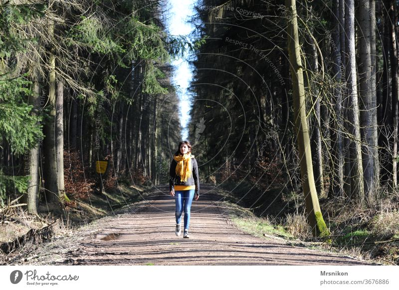 wander hike Hiking Forest forest path Forest road Exterior shot Trip ways paths holidays Relaxation Colour photo huts spring out Landscape Nature