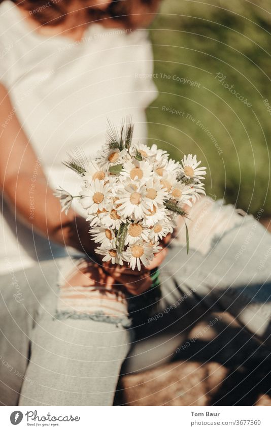 Bouquet of daisies held by woman with torn jeans flowers marguerites Nature bleed White spring Daisy natural green already Summer Fresh Yellow
