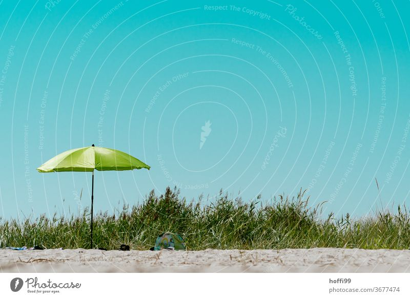 Green parasol on the beach in the dunes Sunshade Blue sky Cloudless sky minimalism Minimalistic Summer Beach Vacation & Travel Sunbathing Coast Relaxation