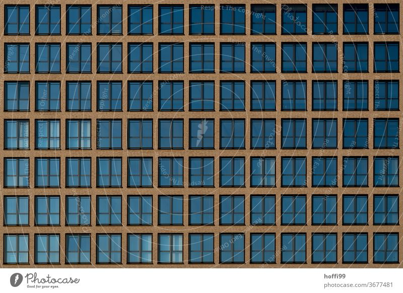 1000 windows, 91visible - the eyes of the city Glazed facade Window pane reflective Roller shutter Minimalistic jalousin Geometry architectural photography