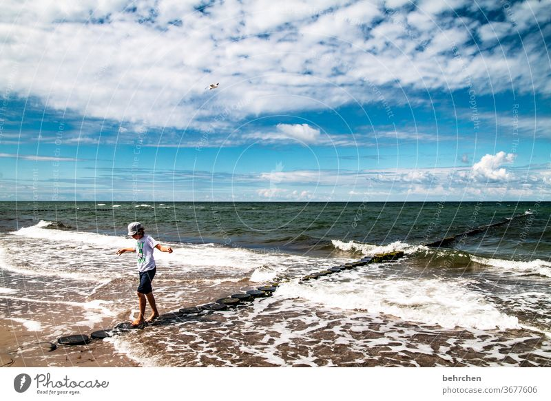 always stay in balance Playing Free Freedom To enjoy relax recover Clouds fischland-darß Germany Relaxation Break water Tourism Baltic coast Landscape
