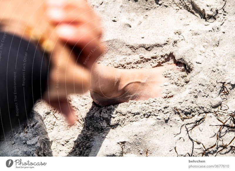 leave traces Exterior shot Sand Feet fortunate Happy Family Together To hold on Fingers Emotions proximity in common Trust Contentment guard sb./sth.