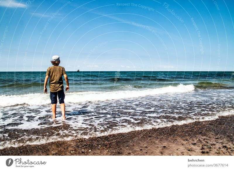 ...except you in the here and now and the day at sea Relaxation Germany fischland-darß Tourism Child Infancy Summer Mecklenburg-Western Pomerania Baltic coast