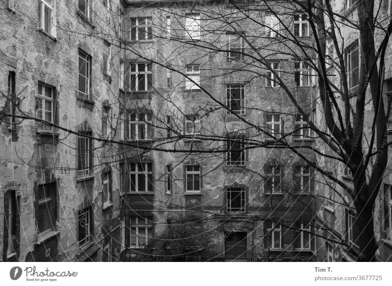 Backyard Berlin Prenzlauer Berg Black & white photo Courtyard Deserted Day Downtown Town Capital city Old town Exterior shot House (Residential Structure)
