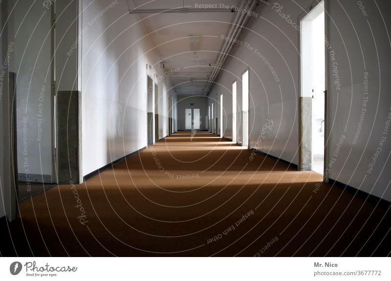 Long corridor in a vacant building Hallway Light Interior design lost places Mysterious door Infinity Passage built indoors Wall (building) Perspective Corridor
